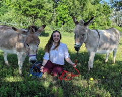 jackie and donkeys